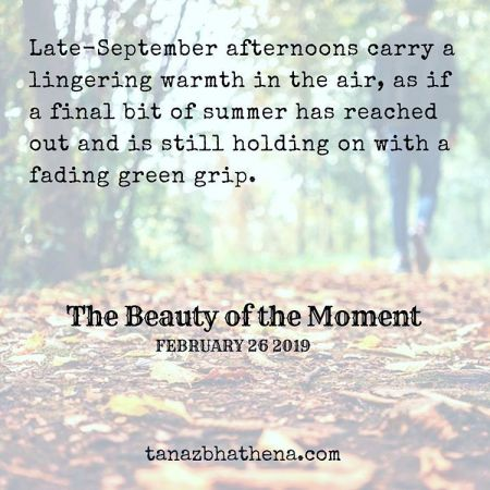 "Quote The Beauty of the Moment ""Late-September afternoons carry a lingering warmth in the air, as if a final bit of summer has reached out and is still holding on with a fading green grip."""