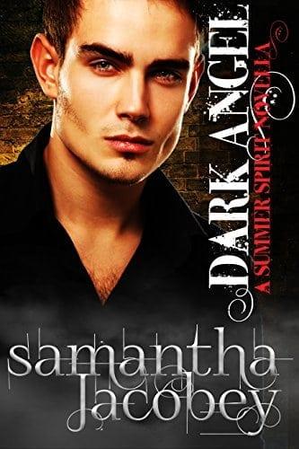 Dark Angel (Summer Spirit Novellas Book 2)