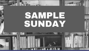 Sample Sunday is an opportunity to check all the books on my shelves and decide what to keep
