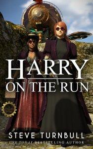 Harry on the Run by Steve Turnbull