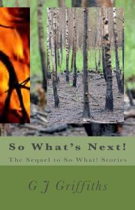 So_Whats_Next_Cover_for_Kindle