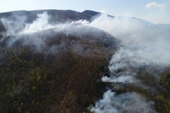 Природные пожары тушат рядом с курортами Кубани