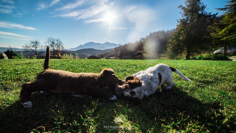 Agriturismo Lo Scoiattolo in Abruzzo sul Gran Sasso – I cieli più belli d'Italia (17)