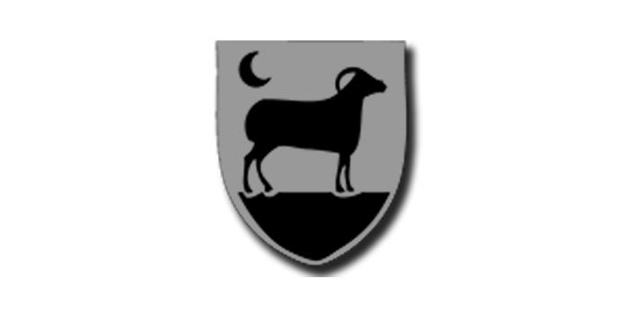 Logo Nacht fan Boazum