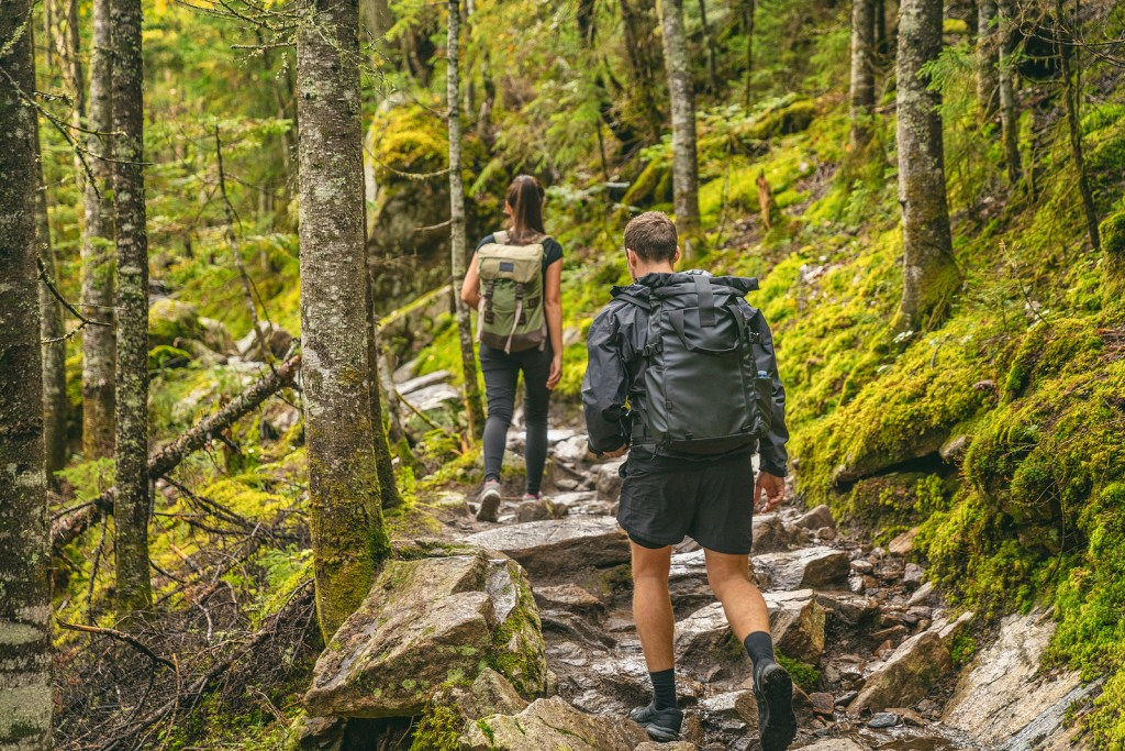 hiking in Tennessee by Booking Express Travel