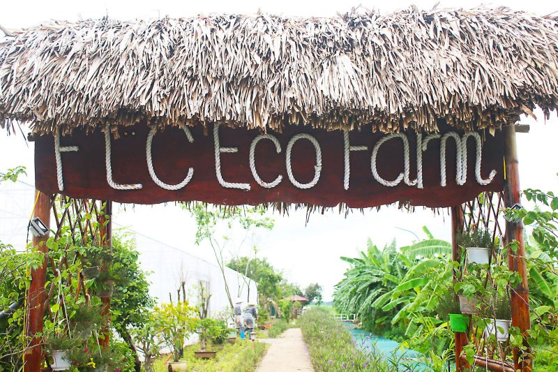 eco farm flc vinh phuc