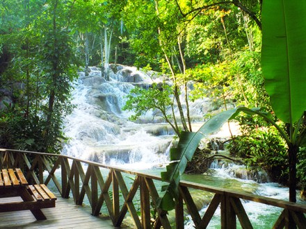 Dunn's River Falls &Highlights from Ocho Rios | Book Jamaica Excursions | bookjamaicaexcursions.com | Karandas Tours