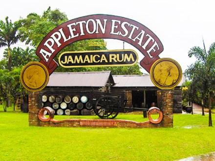 Appleton Estate Jamaica | Book Jamaica Excursions | bookjamaicaexcursions.com | Karandas Tours