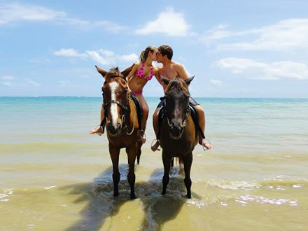 Heritage Beach Horseback Ride & Dunn'r River Falls | Book Jamaica Excursions | bookjamaicaexcursions.com | Karandas Tours