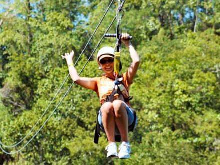 Zipline Adventure   Book Jamaica Excursions   bookjamaicaexcursions.com   Karandas Tours