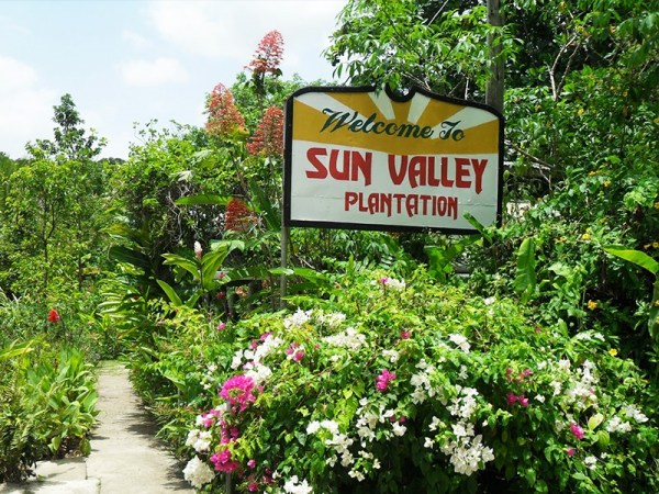 Sun Valley Plantation Tour