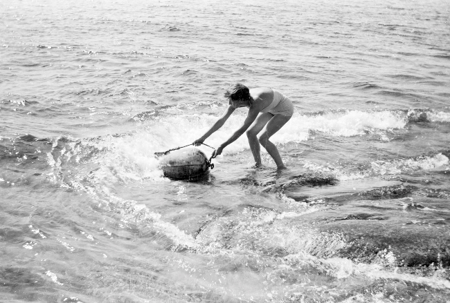 B&W TOVE IN SEA