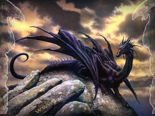 dragons01 (398)