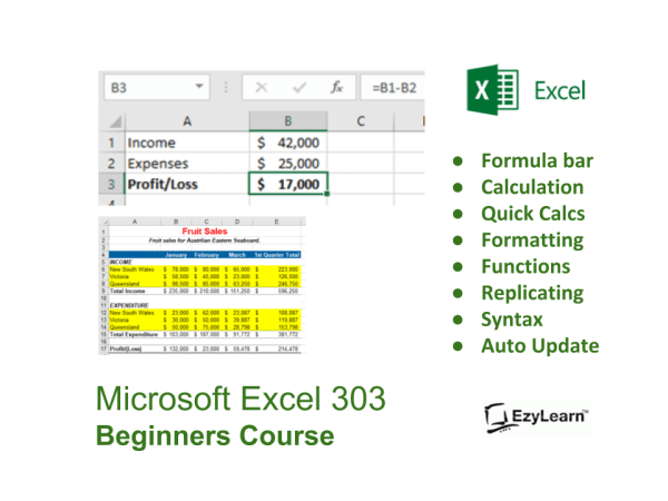 Microsoft Office Excel Beginners Course for dummies - Formulas and formatting spreadsheets - EzyLearn