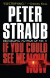If You Could See Me Now - Peter Straub