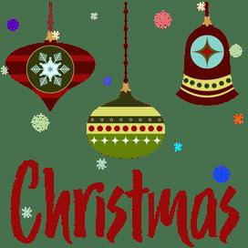 20 - Christmas