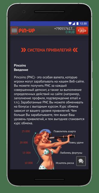 screen-pin-up-bet-20