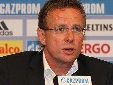 Крупнейшие букмекеры уверены, что Ральф Рангник станет новым менеджером «Вест Бромвич Альбион»