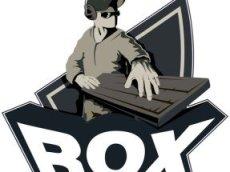 Команда RoX.KiS считается одной из лучших среди коллективов этого калибра в России