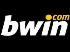 Аналитики считают, что у Bwin.party нет продукта или региона, от которого бы компания получала стабильно высокую выручку