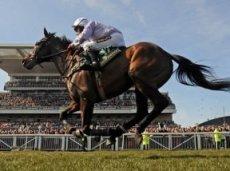 Betfred помогает в организации более 600 гонок в Великобритании