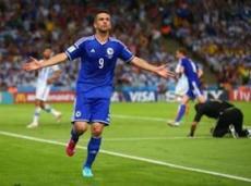 Ибишевич пока забил единственный мяч своей сборной на ЧМ-2014