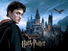 Опубликован рассказ о 33-летнем Гарри Поттере