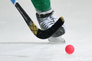 Чемпионат мира по хоккею с мячом в Иркутске отменен из-за коронавируса