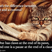 The Difference Between Cats and Commas