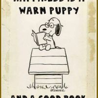 Snoopy Loves Books