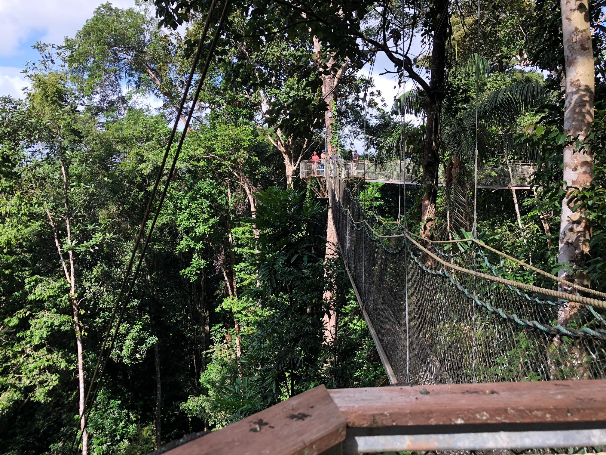 Iwokrama Canopy Walkway 2 & Iwokrama Canopy Walkway Guyana - Bookmarks u0026 Waypoints