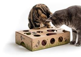 Treat maze for cats