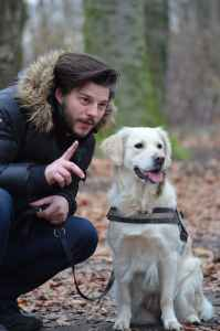 Dog Training communication