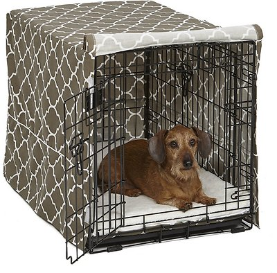 Delicate Side Dog Crate