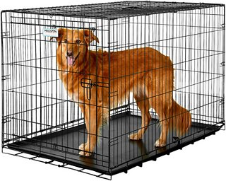 immideate crates for dogs