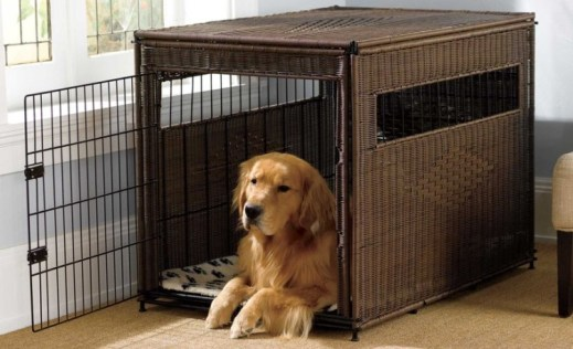 What is a Dog Crate?