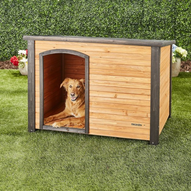 10 Creative Diy Dog House Ideas Bookmypainting