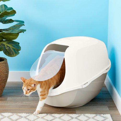 Choose a Litter Box (Litter Train a Cat)