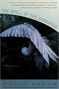 David Abram The Spell of the Sensuous