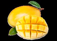 Goodbye Mangoes- Read Essay with Sara