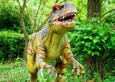 'A Trip To A Dino Safari' Story by 6 year old Bookosmian from Delhi