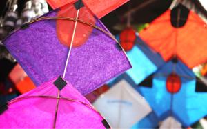 Read Poem by kids on Kites Bookosmia