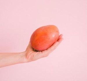 Mango season - King mango and the fear of knives
