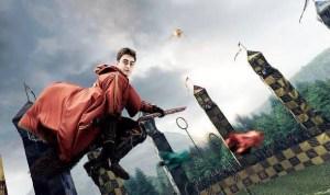 Quidditch in school - Please Principal m'am?