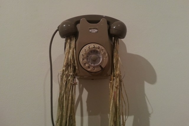jukhee kwon Fluxus Phone