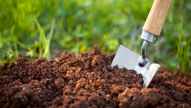 Classification of Indian Soils Notes 2021: Download Classification of Indian Soils Study Materials