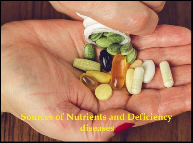 Sources of Nutrients and Deficiency Diseases Notes 2021: Download Sources of Nutrients and Deficiency Diseases Study Materials