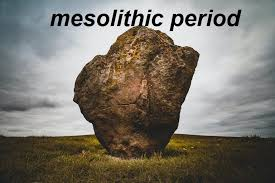 Mesolithic Age in India Syllabus Notes 2021 Download Study Materials BOOK PDF
