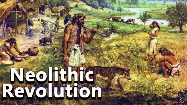 Neolithic Age in India Syllabus Notes 2021 Download Study Materials BOOK PDF