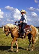Cowboy on Horse Fancy Blanket Free Use - Copy
